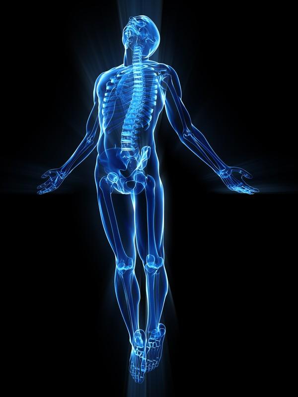 Human Body Martial Arts